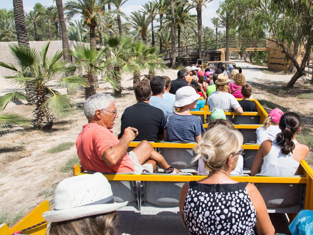 Rio Safari Elche +Transport-Park Tickets