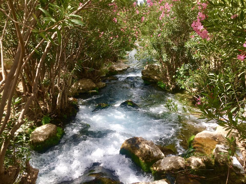 Algar Waterfalls (from Calpe)