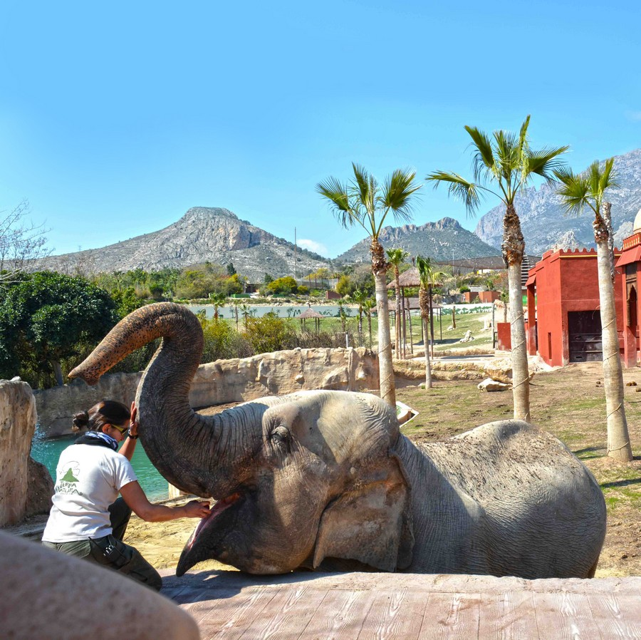 Photo from Terra Natura Winter Offer +Transport +Lunch