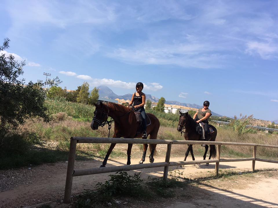 Photo from Horse Riding