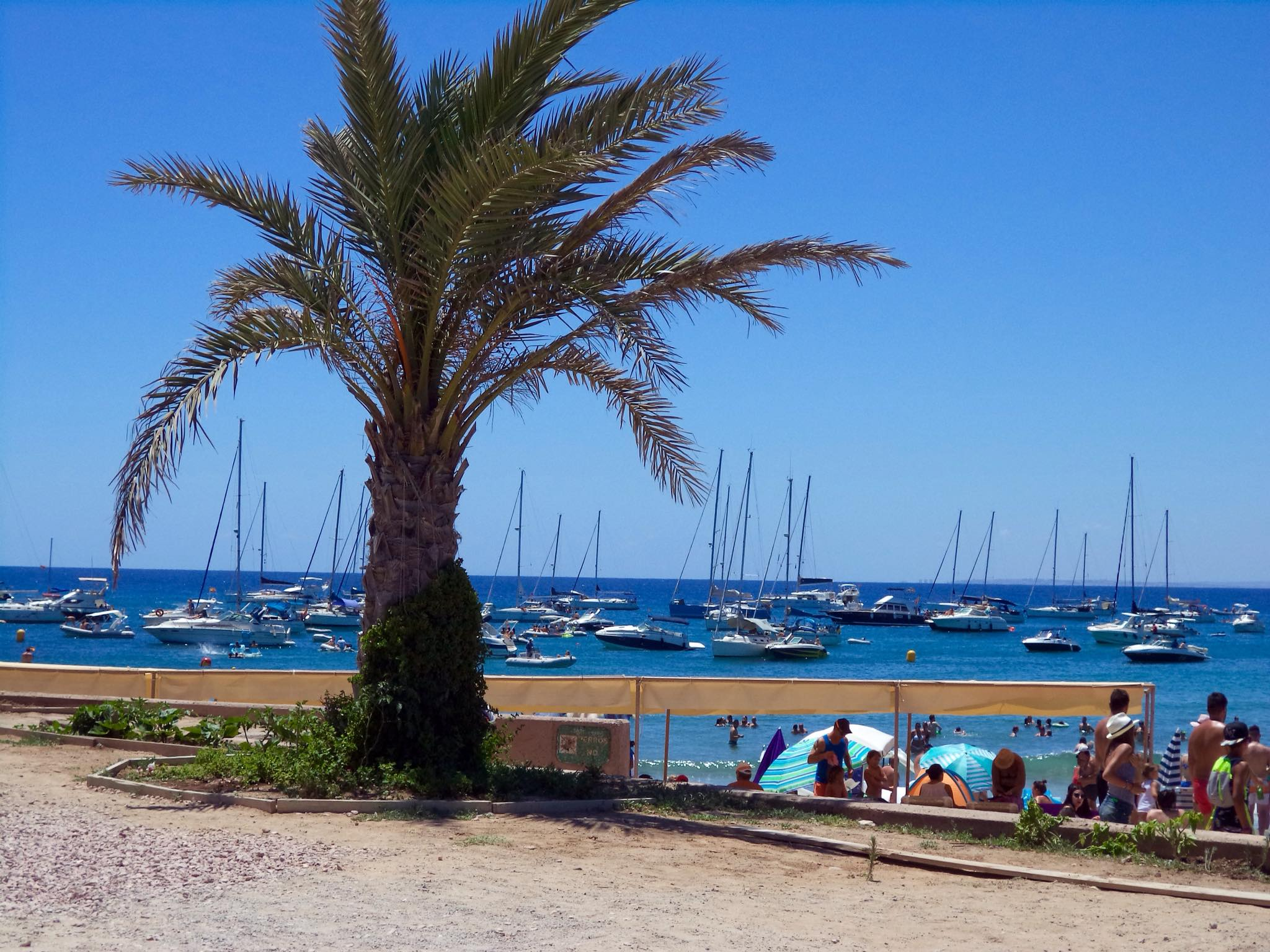 Photo from Boat Trip: Alicante & Tabarca